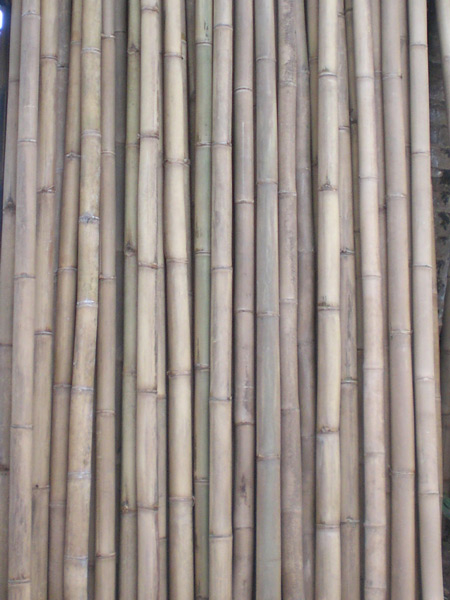 Bamboo Poles Supply Product Services Building Material